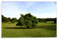 A View From Kenwood House , Acrylic Print