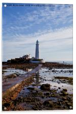 St Mary's Island and Lighthouse (Portrait view), Acrylic Print