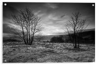 Hope Valley Black and White, Acrylic Print