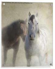 Best Buddies, Acrylic Print