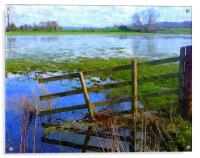 Flooding on the Somerset Levels, Acrylic Print
