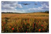 Lest We Forget, Acrylic Print