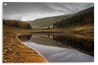 Howden Autumn Reflections , Acrylic Print