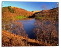 Derwent Reservoir Autumn Colours, Acrylic Print