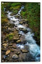 West Lyn River at Lynmouth                     , Acrylic Print