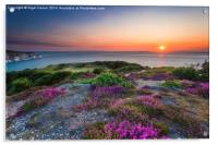Headon Warren Sunset, Acrylic Print
