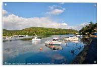 Early morning on The River Looe  in Cornwall, Acrylic Print