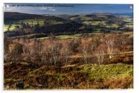 View from Stanage Edge, Acrylic Print