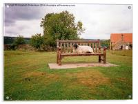 Sheep on bench in Goathland, North Yorkshire Moors, Acrylic Print