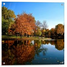 Reflection in the Park, Acrylic Print