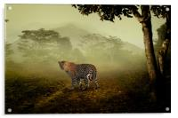 Leopard surprised in the forest, Acrylic Print