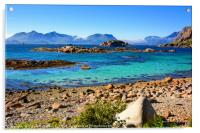 A Bright Summer Day in the Lofoten Islands, Acrylic Print