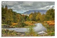 Autumn Colours in the Lake District, Acrylic Print