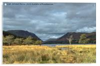 Buttermere Trees, Acrylic Print