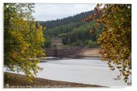 Derwent Dam between the trees, Acrylic Print
