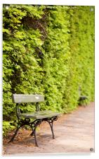 hedgerow and empty bench, Acrylic Print