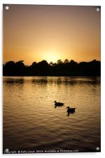 Sunset Geese on the Norfolk Broads, Acrylic Print