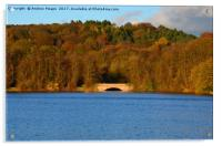 Autumn view of reservoir  lake in Staffordshire, Acrylic Print