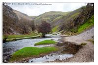 Islands in the stream, Dovedale, Acrylic Print