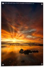 Sunrise over Bass Rock, Acrylic Print