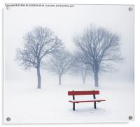 Winter trees and bench in fog, Acrylic Print