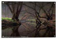 Reflections On The River Team, Acrylic Print