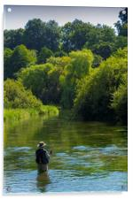 Fly Fishing ,River Itchen,Hampshire England, Acrylic Print