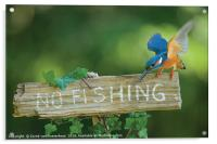No fishing!, Acrylic Print