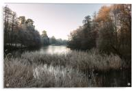 Hoar Frost at Virginia Water Lake, Acrylic Print
