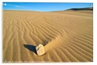 Beautiful sand dunes of the Rancho Guadalupe Dunes, Acrylic Print