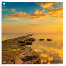 Golden sunlight illuminates a ledge at Kimmeridge, Acrylic Print