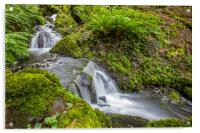 Waterfalls in Canonteign in South Devon, Acrylic Print