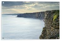 Lonely Seagull at Nash Point., Acrylic Print