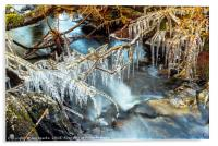 Icicles, Selside Beck, Acrylic Print