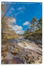 Springtime at Low Force Waterfall, Upper Teesdale, Acrylic Print