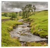 Ettersgill Beck Teesdale after a Wet Day 2, Acrylic Print