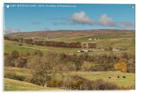 Upper Teesdale in Autumn, Over To Ettersgill , Acrylic Print