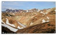 Beautiful and rugged landscape in Iceland, Acrylic Print