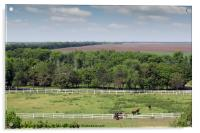 farmland and herd of horses in corral aerial view, Acrylic Print