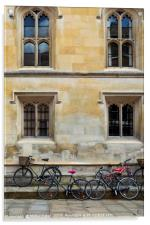 Bicycles parked along the pavement in Cambridge, Acrylic Print