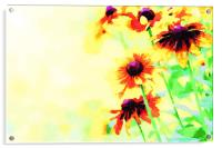 Abstract yellow blooming flowers, Acrylic Print