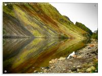 Reflection in the Loch, Acrylic Print
