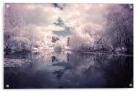 Lilac Reflections in Watermead Park, Acrylic Print