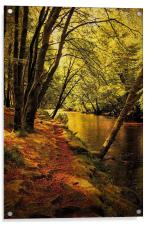 Beechwoods by the River Coe, Acrylic Print