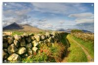 Pathway to the Mourne Mountains, Acrylic Print