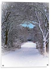 A Winter's Walk In Snowy Scotland., Acrylic Print
