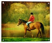 A Gentle Canter, Acrylic Print