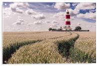 Tracks to Happisburgh Lighthouse, Acrylic Print