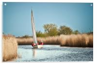 Yachting on the River Thurne, Acrylic Print