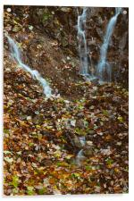Waterfall and autumnal leaves near Brothers Water., Acrylic Print